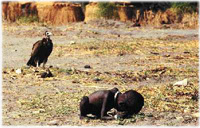 Pulitzer Prize 1994 Feature Photography 部門 Kevin Carter, free-lance photographer